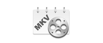 MKV Cutter