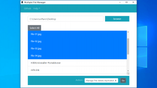 Multiple File Manager