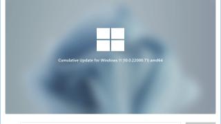 EaseUS Windows11Builder