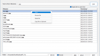 Search Filenames